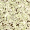 Лимил тип 68 Шанелька жидкие обои, оливковые, шёлк