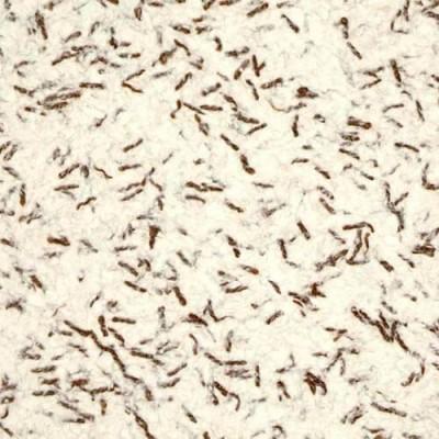 Лимил тип 73 жидкие обои, белые, целлюлоза