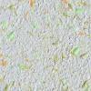 Жидкие обои Новый-Тон 31, композиция цветов, смесь шёлка и целлюлозы