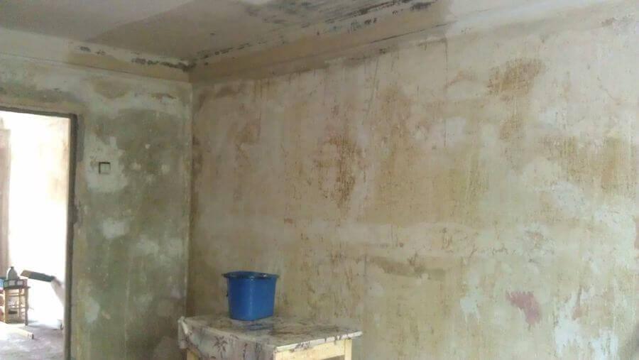 Подготовка стен под жидкие обои: 4 основных этапа | 507x900